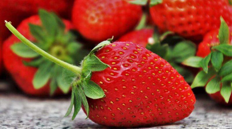 czerwone truskawki